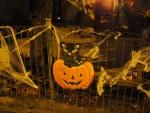 halloween-a-posafol_recolte-des-bonbons_10.jpg